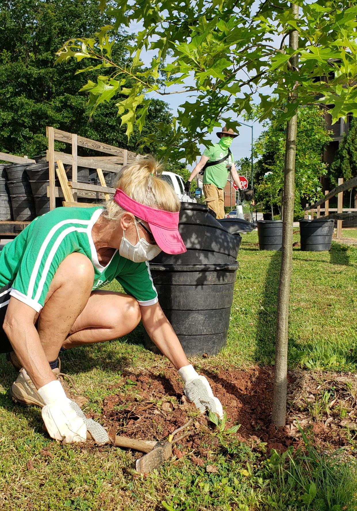 Volunteer planting tree