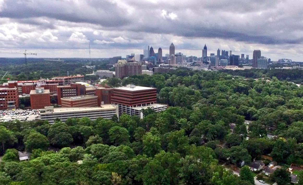 Atlanta skyline and trees