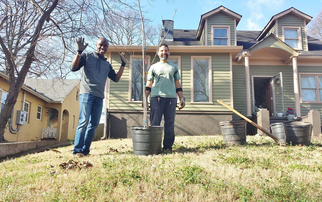 Volunteers planting front yard tree