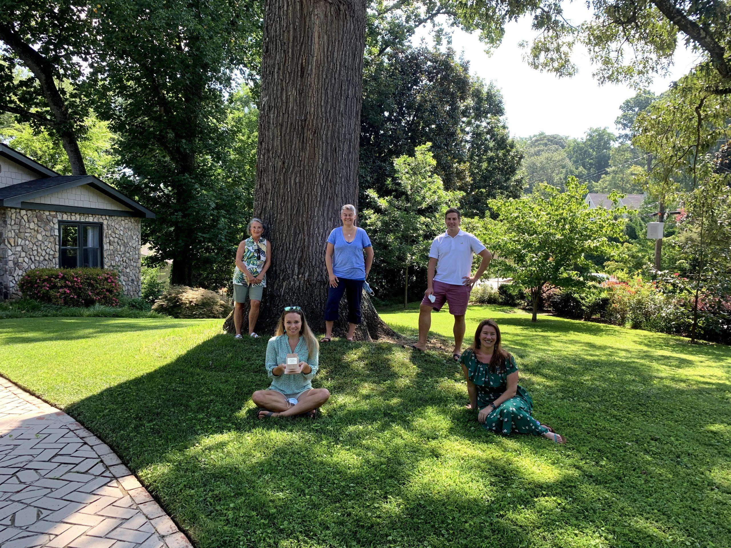 Neighborhood Tree Champion Sherwood Forest