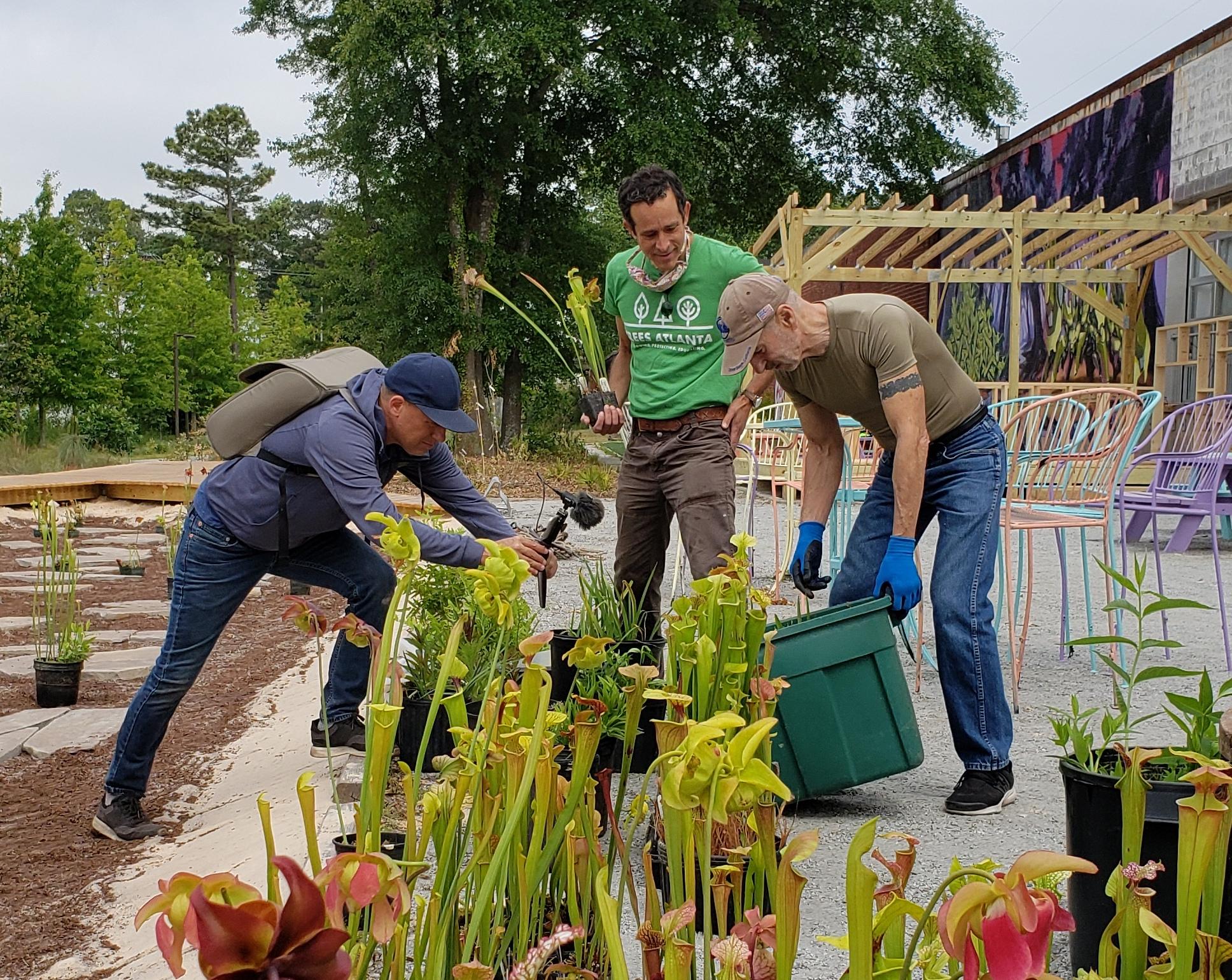 Greg Levine and volunteers in bog garden