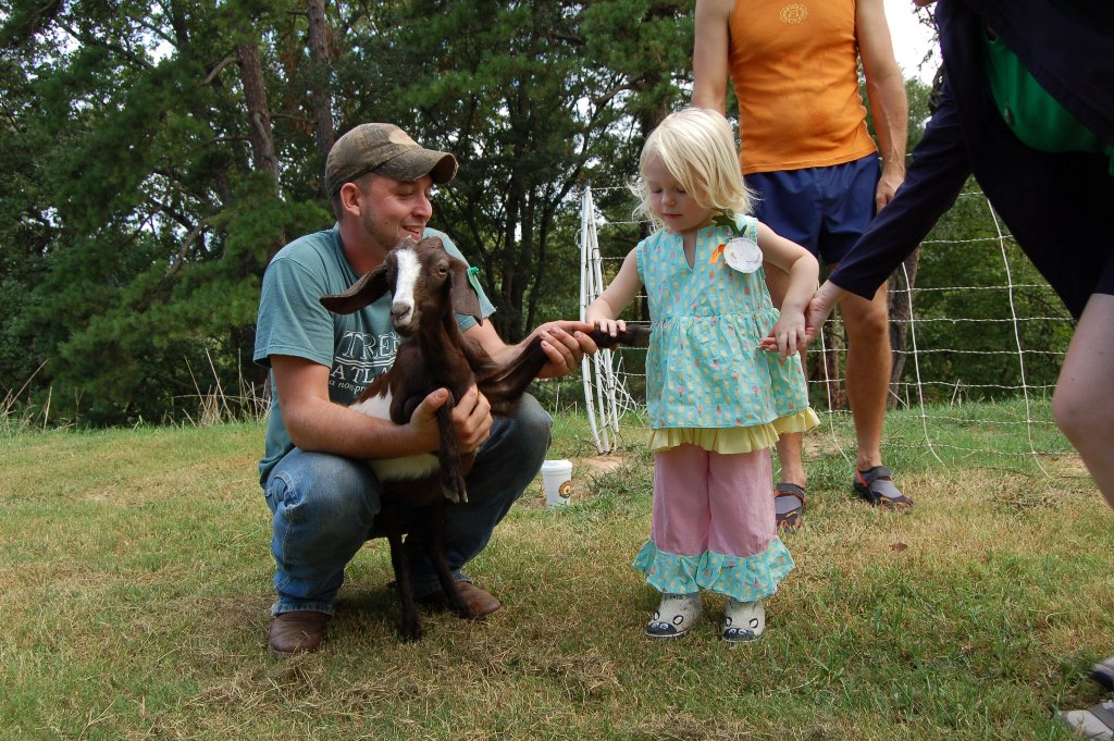 Pet the Sheep w Sheep shoes smaller