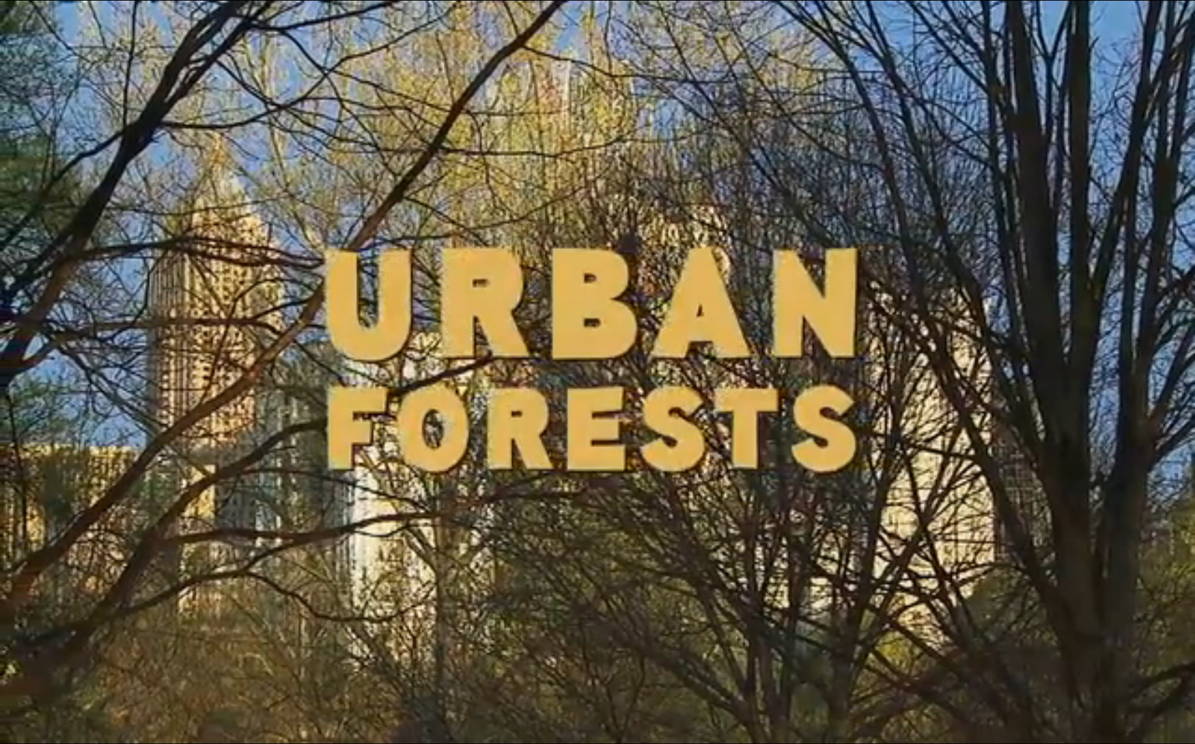 urban-forests